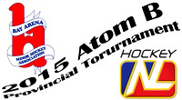 2015 Atom B Tournament - Bay Arena